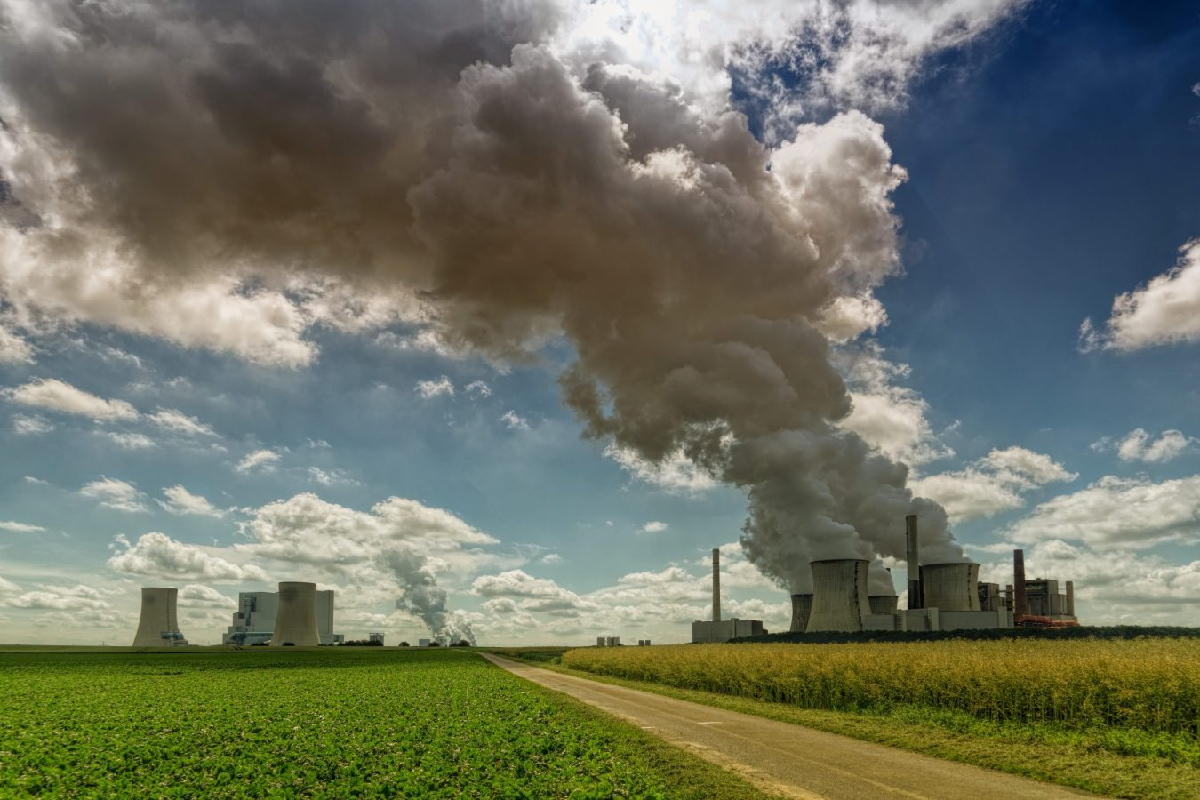 Le changement climatique entraîne des pertes financières